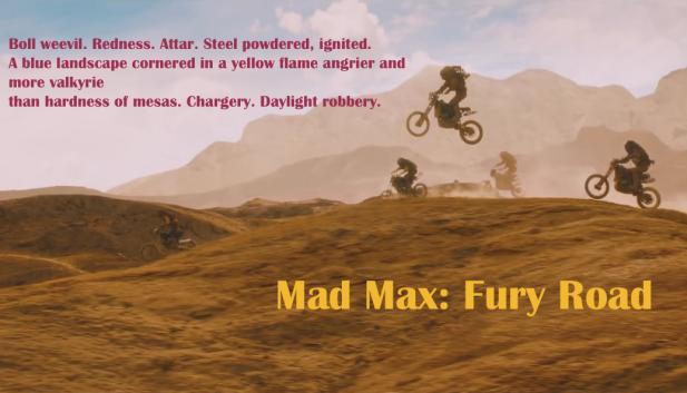 mad max_mehtacritic